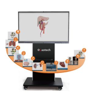 數字化人體超聲解剖導航系統